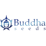 Banco de semillas Buddha Seeds