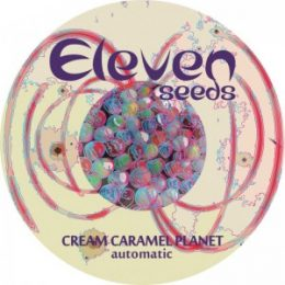 Cream Caramel Planet Autofloreciente (2) – Eleven Seeds