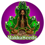 Banco de semillas Makka Seeds