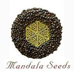 Banco de semillas Mandala Seeds
