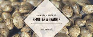 semillas a granel chile